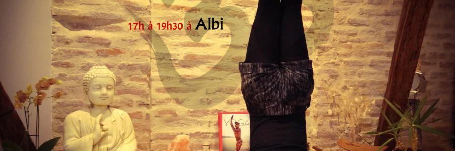 Stage Yoga en équilibre – Albi – Dimanche 15 Janvier 2017